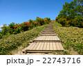 陣馬形山 22743716