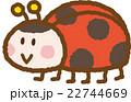 てんとう虫 22744669