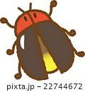 蛍 虫 昆虫のイラスト 22744672
