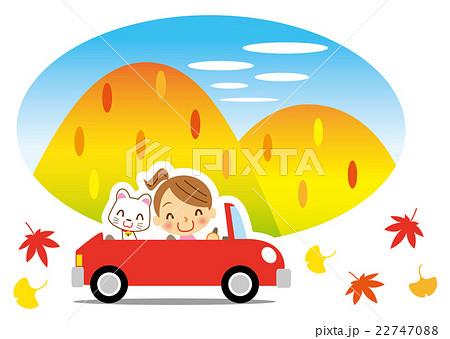 秋の彩り 白猫とドライブを楽しむお姉さん 22747088