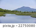 尾瀬 湿原 新緑の写真 22750080