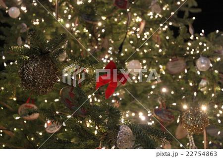 夜空に光るクリスマスツリー 22754863