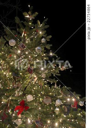 夜空に光るクリスマスツリー 22754864