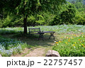 木陰の花とベンチとテーブル 22757457