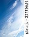 初夏の青空と雲 22759084