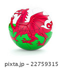 Soccer football ball with Wales flag 22759315