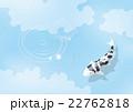青空と錦鯉 22762818