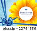 向日葵の夏らしい綺麗なフレーム 22764556