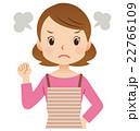 主婦 女性 怒るのイラスト 22766109