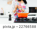 料理 22766588