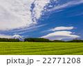 富士山と茶畑とレンズ雲 22771208
