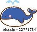クジラ 22771734