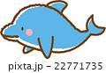 イルカ 22771735