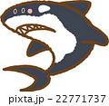 シャチ 22771737