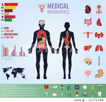 Medical Infographic set with charts. Vectorのイラスト素材 [22772388] - PIXTA