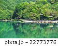嵐山の風景 22773776