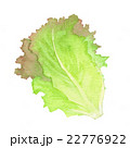 22776922