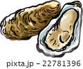 牡蠣2 22781396