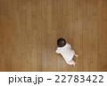 赤ちゃん ハイハイ 22783422