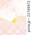 背景 和 和紙のイラスト 22789972