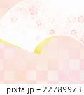 背景 和 和紙のイラスト 22789973