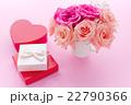 母の日のプレゼント 22790366