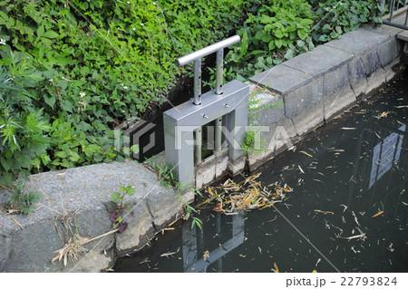農業用水の小さな水口ゲート 22793824