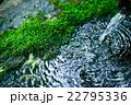 庭園 22795336