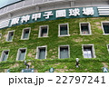 甲子園球場の外壁 22797241