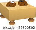 囲碁 22800502
