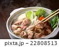 鶏鍋 22808513