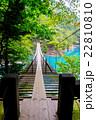 ダム湖 橋 夢の吊り橋の写真 22810810