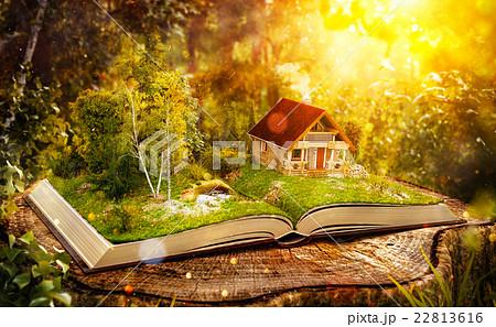 Cute magical log house 22813616