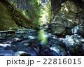 新緑の白倉峡 22816015