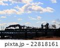 2015年1月10日 上越線 渋川ー敷島 C61+旧型客車 22818161