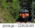 2015年5月3日 吾妻線 矢倉 115系 22818165