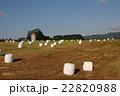 牧草地 牧場 風景の写真 22820988