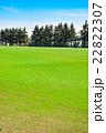 牧草地 高原 草原の写真 22822307