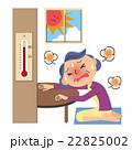 エアコンを使わない老人 22825002