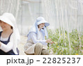 農家の家族 22825237