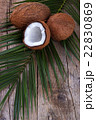 Coconut on wooden table. 22830869