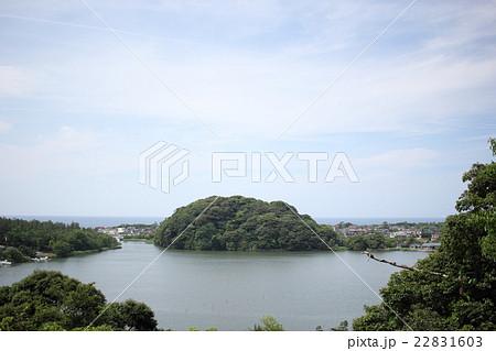 鹿島の森(石川県 加賀市 鹿島神社 大聖寺川) 22831603