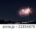 なにわ淀川花火大会 22834876