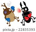 昆虫のボクシング 22835393