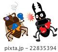 昆虫のボクシング 22835394