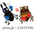 昆虫のボクシング 22835396