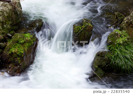 箕面川の清流の写真素材 [22835540] - PIXTA