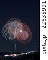 なにわ淀川花火大会 22835991