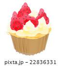 カップケーキ ケーキ マフィンのイラスト 22836331