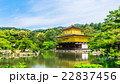 京都 新緑の金閣寺 22837456
